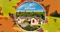 Autumn at Hotel Bankov